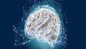 تفاوت ذهن و مغز